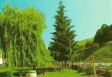 004 Detský park