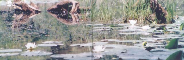03 Príroda