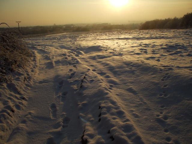 08 Zimná krajina na Lapoši